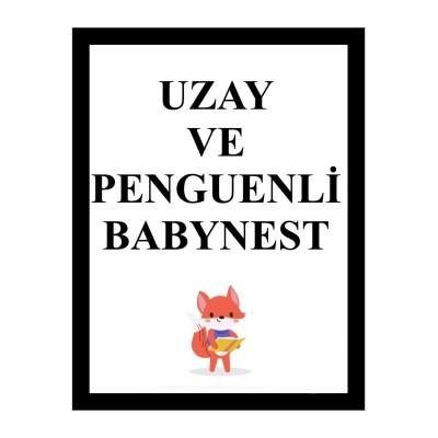 Uzay ve Penguenli Babynest (1)