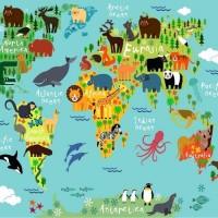 Arka Renk/Desen Seçiniz: Hayvan Haritası